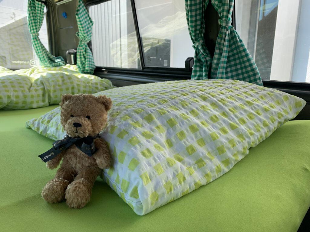 CampBär sitz im Bett
